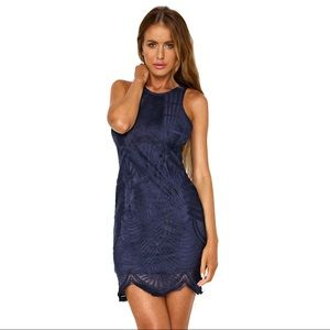 Hello Molly Fly With Me Lace Dress Navy Size 2